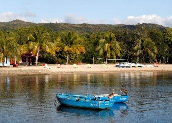 Fotografía del archivo del 16 de enero de 2020 que muestra dos pelícanos posados en dos botes, en la Villa Guajimico, en Cienfuegos. Foto: Yander Zamora / EFE / Archivo.