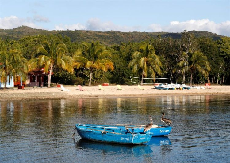 Fotografía del 16 de enero de 2020 que muestra dos pelícanos posados en dos botes, en la Villa Guajimico, en Cienfuegos. EFE/ Yander Zamora