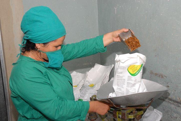 Planta de Bioplaguicidas de la empresa Labiofam en Cienfuegos, donde se produce el Biorat. Foto: 5septiembre.cu / Archivo.