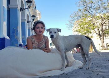 Olivia y Firulais. Foto: Néster Núñez.