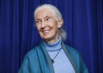 Jane Goodall . Foto: Damian Dovarganes/AP.
