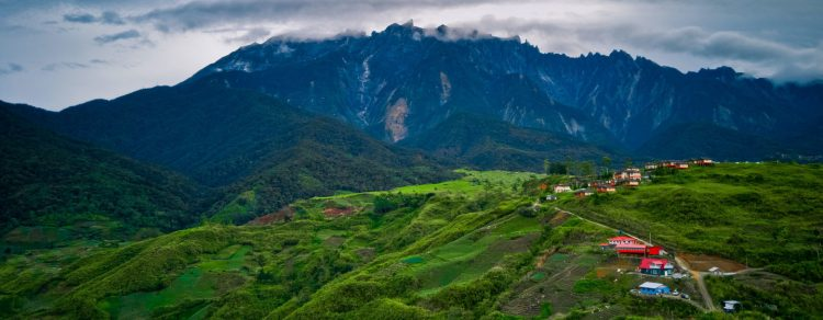 Malasia es uno de los países con la mayor biodiversidad del mundo. Foto: Noticias ONU