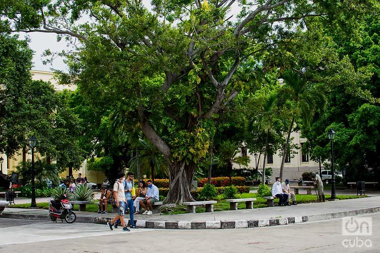 Plaza Cadenas en la Universidad de La Habana. Foto: Otmaro Rodríguez / Archivo.