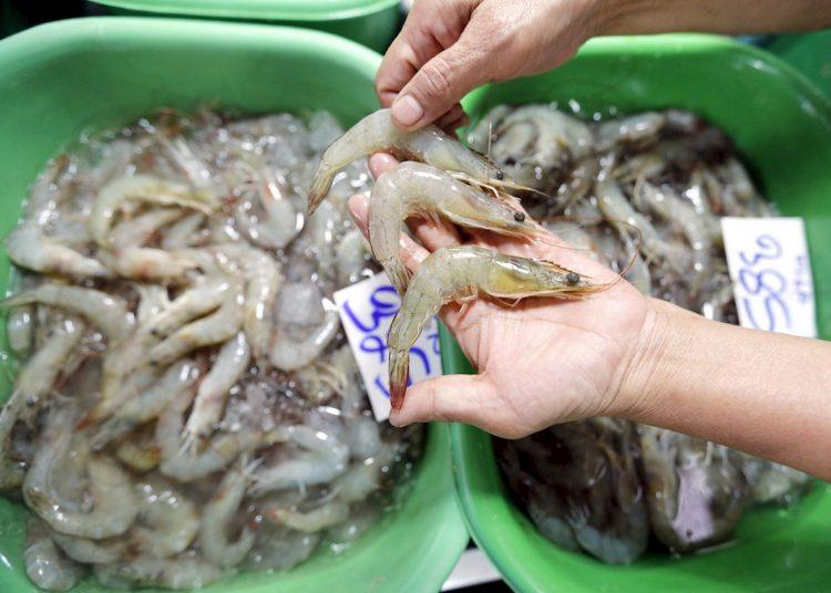China suspende la importación de camarones de Ecuador al detectar virus en paquetes. Foto: EPA/NARONG SANGNAK/EFE, archivo.