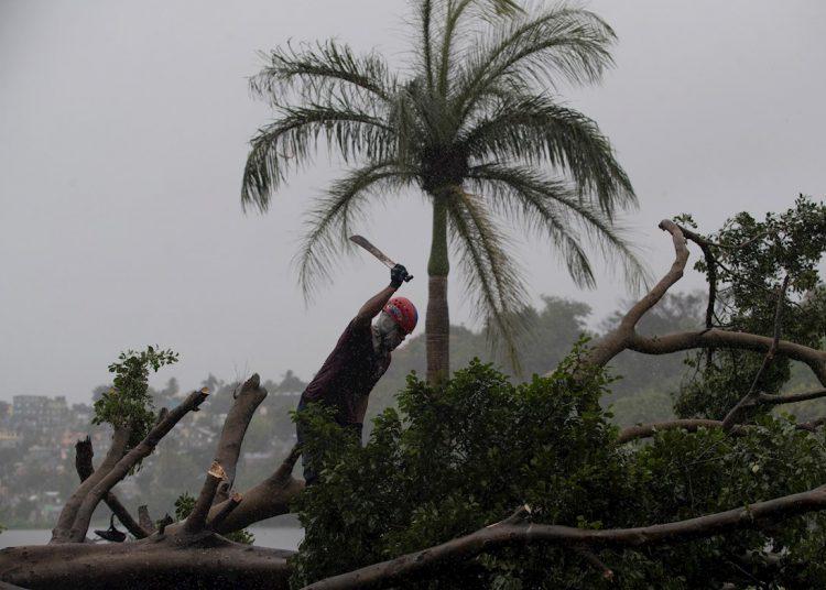 Un bombero corta un árbol derribado por el viento y la lluvia este jueves en Santo Domingo (República Dominicana). Foto: Orlando Barría/EFE