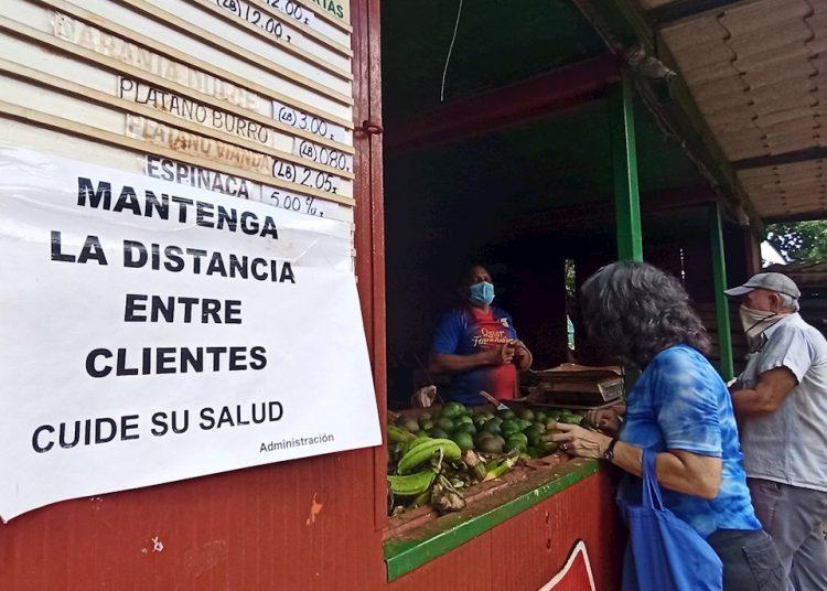 Por regiones, los 11 casos de hoy se circunscriben a los municipios de Bauta (Artemisa), Marianao, Playa, Diez de Octubre y Plaza de la Revolución (La Habana) y Camajuaní (Villa Clara). Foto: Ernesto Mastrascusa/EFE/archivo.