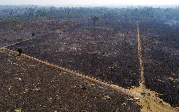 Vista aérea de un área consumida por un incendio cerca de Novo Progresso, en el estado de Pará, Brasil, el martes 18 de agosto de 2020. Foto: Andre Penner/AP.