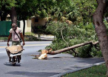 Un hombre pasa junto a un árbol caído tras la tormenta tropical Laura en La Habana, el martes 25 de agosto de 2020. Foto: Ernesto Mastrascusa / EFE.