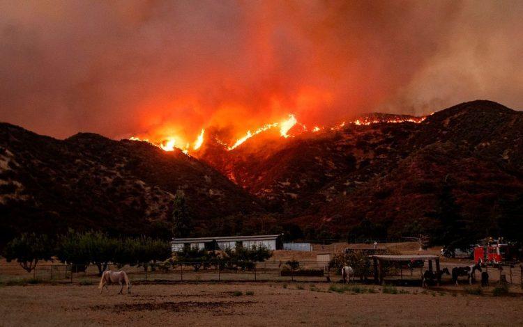 El fuego en  Banning, California. Foto: Josh Edelson/AFP.