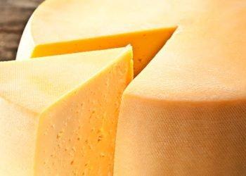 Cheese. Macro