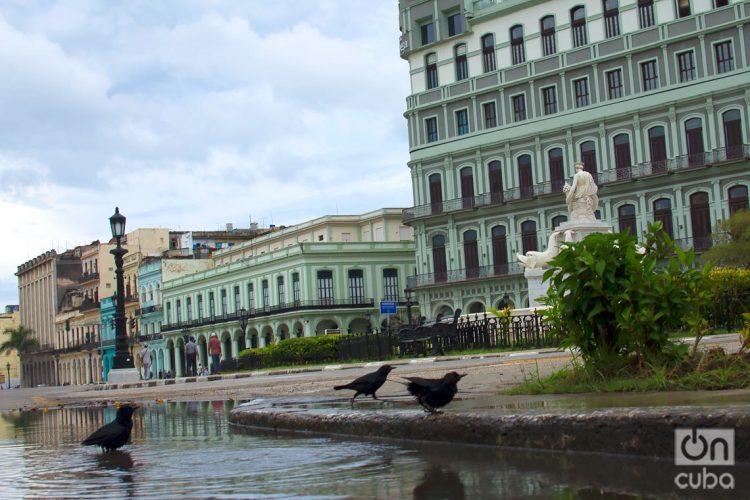 Paisaje de La Habana Vieja. Foto: Otmaro Rodríguez.