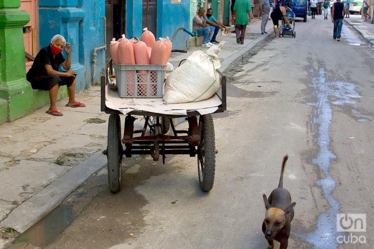 La pandemia ha afectado a economías y agravado crisis ya existentes, como en el caso de Cuba, donde el desabastecimiento cíclico de las tiendas estatales mantiene a sus habitantes a la caza constante de artículos de primera necesidad. Foto: Otmaro Rodríguez