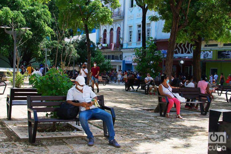 Un hombre revisa su teléfono en un parque en La Habana. Foto: Otmaro Rodríguez.