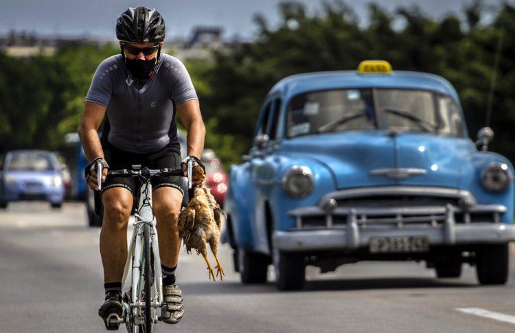 Un ciclista con máscara como medida de precaución contra la propagación del nuevo coronavirus lleva un pollo en la mano mientras pedalea su bicicleta en La Habana, Cuba, el domingo 11 de octubre de 2020. Foto: Ramón Espinosa/AP.