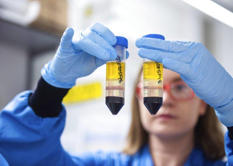 En esta imagen difundida por la Universidad de Oxford el lunes 23 de noviembre de 2020, una investigadora en un laboratorio del Instituto Jenner en Oxford, Inglaterra, trabaja en la vacuna contra el coronavirus que desarrollan AstraZeneca y la Universidad de Oxford. Foto: Universidad de Oxford/John Cairns vía AP/Archivo.