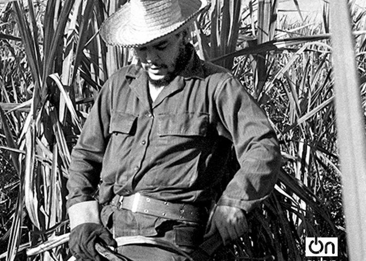 El Che en el Central Orlando Nodarse, Mariel. 1962. Foto: Ernesto Fernández.