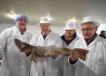 Boris Johnson haciendo campaña en el mercado de pescado de Grimsby, en 2019. Foto: IP.