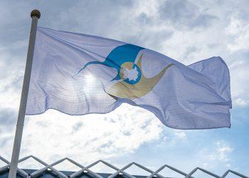 Bandera de la Unión Económica Euroasiática. Foto: sputniknews.com / Archivo.