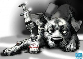 El Sulfato de Vincristina es el mejor tratamiento para el Tumor de Sticker. Ilustración: Claudia Margarita Guillén.