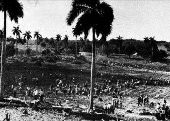 El Cordón de La Habana. Foto: Archivo.