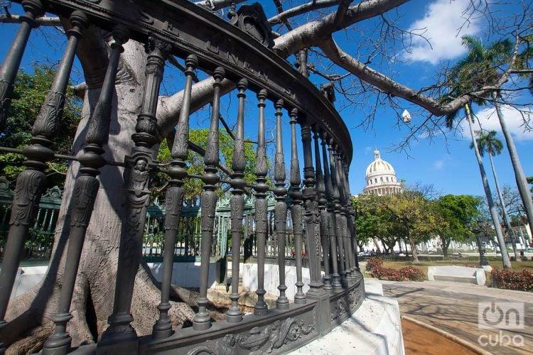 El Parque de la Fraternidad, en La Habana. Detrás, la cúpula del Capitolio Nacional. Foto: Otmaro Rodríguez.