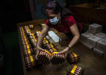 Una trabajadora con una mascarilla protectora empaqueta puros en la fábrica de puros Partagás en La Habana, Cuba, el jueves 11 de marzo de 2021. Foto: AP/Ramón Espinosa.
