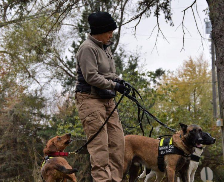 La investigadora privada Karin TarQwyn ha montado un equipo de perros rastreadores para localizar mascotas robadas. Foto: tomada de Time.