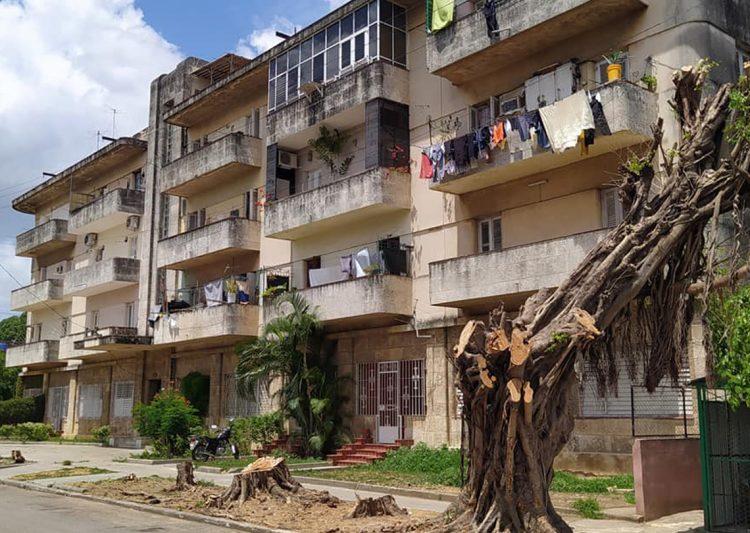 Esquina de 19 e/ 24 y 26, Vedado. Foto: Grupo Habana Verde (Facebook). Fecha: 18/04/2021.