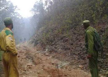 """Un incendio de grandes proporciones afectó al Parque Nacional """"Alejandro de Humboldt"""", declarado en 2001 Patrimonio de la Humanidad. Foto: ACN."""