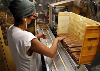 Una mujer trabaja en el proceso de producción de tabacos, en Tabacuba, hoy en La Habana (Cuba). Foto: EFE/Yander Zamora.