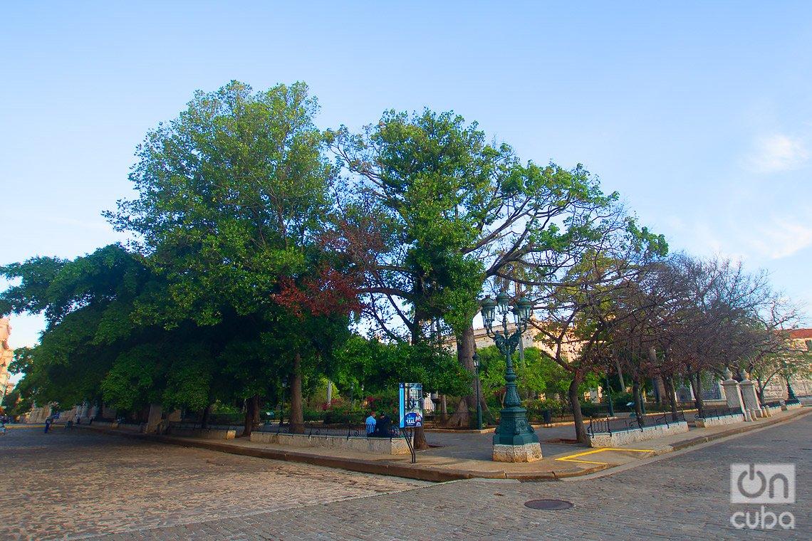 Plaza de Armas, al final de la calle Obispo, en La Habana. Foto: Otmaro Rodríguez.