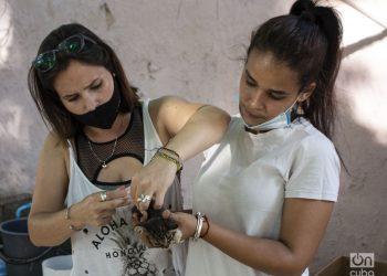 Gabriela López y Claudia Soto. Foto: Yoel Rodríguez Tejeda.