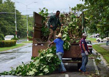 Trabajos de recuperación en Pinar del Río tras el paso del huracán Ida. Foto: @guerrillero_cu / Twitter.